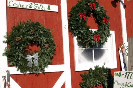 optimized-wreaths